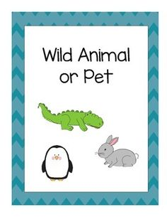 This download includes a cut and paste sorting worksheet and a file folder game to review concept later. Both the worksheet and the file folder game include 12 animals to sort, six pets and six wild animals. Great to use during a preschool unit on wild animals or pets.