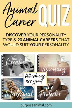 Check out this ANIMAL CAREER QUIZ! Answer a series of questions and find out YOUR Personality Type. You will also get a gorgeous report describing your personality along with TWENTY animal careers that would suit YOU. Check it out here. Job Career, Career Change, Career Advice, Future Career Quiz, Career Choices, Dream Career, Describe Your Personality, Personality Types, Jobs With Animals