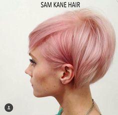 Pink Pixie Bob                                                       …