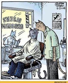 http://img0.joyreactor.com/pics/post/comics-bizarro-barber-cats-391497.jpeg