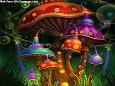 Free Enchanted Mushrooms Wallpapers, Enchanted Mushrooms Pictures, Enchanted Mushrooms Photos, Enchanted Mushrooms #9224 1024X768 wallpaper