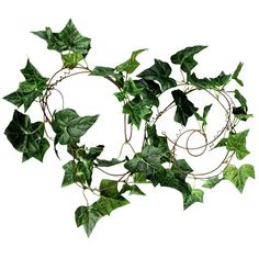 Cheap 10 cents a piece for walls or tables or aisle 9ft Artificial Fake Faux Ivy Vine Plant Garland Wedding new Epower Mall http://www.amazon.com/dp/B00APVP3C4/ref=cm_sw_r_pi_dp_F9tMtb10G5VSBG4F