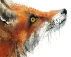 Fox print . Animal watercolor Illustration. Red by MiraGuerquin
