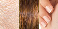 Un ensemble d'oligoéléments et de vitamines contribuent à l'entretien des cheveux (zinc, sélénium, vitamine B8), des ongles (zinc, sélénium), de la peau (zinc, cuivre, vitamines B2, B3, B8 et A) et des muqueuses (vitamines B8 et A).