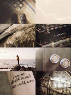 Ilvermorny houses aesthetics: Thunderbird