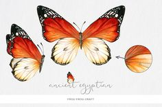 Butterflies by Frou Fou Craft on @creativemarket