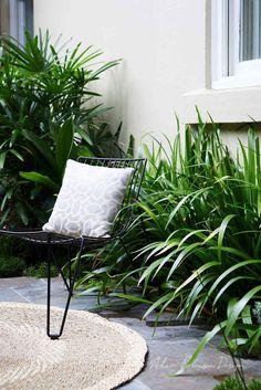 Landscape Design Stanmore — Adam Robinson Design Backyard Garden Design, Small Backyard Landscaping, Small Garden Design, Modern Landscaping, Backyard Patio, Backyard Ideas, Front Courtyard, Courtyard Gardens, Rooftop Terrace Design