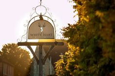 The White Hart ~ Set within the scenic South Downs, sumptuous outdoor dining, a refreshing drinks menu and accommodation is on offer. and hopefully summer sunshine! Countryside Village, Best Pubs, Best Rated, Refreshing Drinks, Outdoor Dining, Sunshine, Menu, Restaurant, Christmas Ornaments