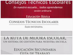 aLeXduv3: Consejos Técnicos Escolares (Todo lo publicado hasta hoy) Secundaria