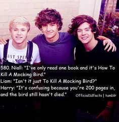 "Facts ♡♡♡ ""The bird still hasn't died"".oh jeez Harry.Official One Direction Facts""The bird still hasn't died"".oh jeez Harry.Official One Direction Facts One Direction Fan Art, One Direction Quotes, Midnight Memories, Mtv, 1d Quotes, Funny Quotes, First Love, My Love, Celebrities"