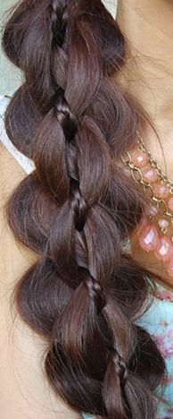 4/5 strand braid, puffed out and with a thin braid as one of the strands?