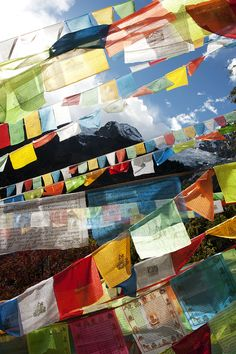 Prayer flags | Prayer flags at the Lotus Temple, with view o… | Flickr
