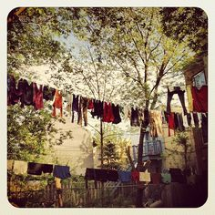 """""""Sous la brise et le soleil, les cordes à linges sont pleines...""""   Photo : Nicolas Marier"""