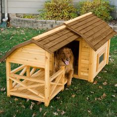 Your dog will enjoy cuddling up in the Boomer & George Wooden Barn Dog House as much as he or she enjoys relaxing on the comfort of a covered front porch. Constructed of fir this dog house is well ins. Wood Dog House, Pallet Dog House, Large Dog House, Dog House Plans, Double Dog House, Tiny House, Outdoor Shelters, Outdoor Dog, Wooden Barn