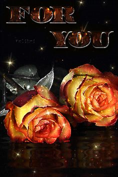 Good Night I Love You, Good Night Flowers, Love You Gif, Good Night Sweet Dreams, Beautiful Fairies, Beautiful Gif, Beautiful Roses, Happy Anniversary Wishes, Happy Birthday Wishes Cards