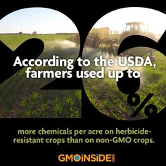 26% more chemicals!   Hmmm, coincidence? GMOs produced by a chemical company!
