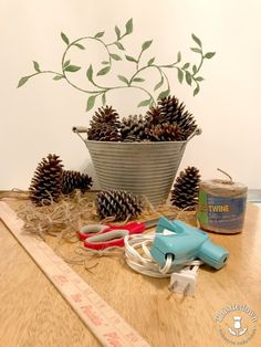 Check out this easy pinecone craft! What a great way to use all the pinecones in my yard!