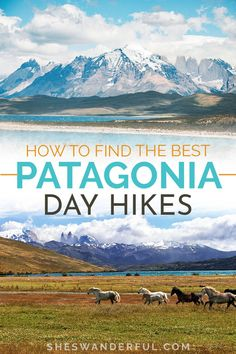 There are plenty of Patagonia hiking adventures you can tackle without having to pack a full camping kit. Here are some of the best Patagonia day hikes to add to your Argentina itinerary! | Patagonia travel | Things to do in Patagonia | Best hikes in Patagonia | Patagonia itinerary | Best hikes in Argentina Backpacking South America, South America Travel, Go Hiking, Hiking Tips, Travel Around The World, Around The Worlds, Patagonia Hiking, Best Campgrounds, Argentina Travel