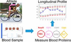 Mass Spectrometry Method to Measure Membrane Proteins in Dried Blood Spots for the Detection of Blood Doping Practices in Sport