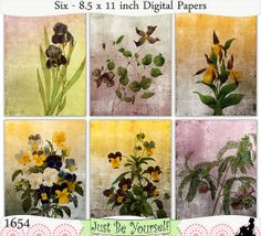 Instant Download Shabby Vintage Flower Illustrations Digital Papers by JustBYourself on Etsy, $3.00 (1654)