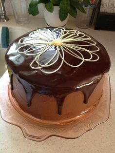 Chocolate cake with white chocolate flower.