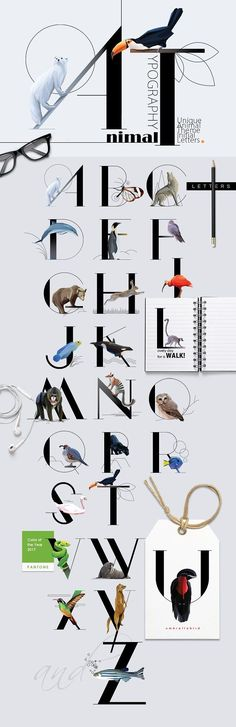 Animal Typography - Initial Letter Decorated with Wildlife Design Typography, Lettering, Typography Fonts, Photoshop, Texture Web, Identity, Template, Branding, Initial Letters