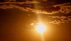 Meteo Abruzzo sabato 29 ottobre 2016 previsioni del tempo e curiosità