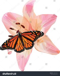 Find Beautiful Low Poly Illustration Pink Lily stock images in HD and millions of other royalty-free stock photos, illustrations and vectors in the Shutterstock collection. Pink Lily, Monarch Butterfly, Low Poly, New Pictures, Royalty Free Photos, Create Yourself, Illustration, Plants, Image