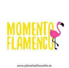 archivo-gratuito-momento-flamenco