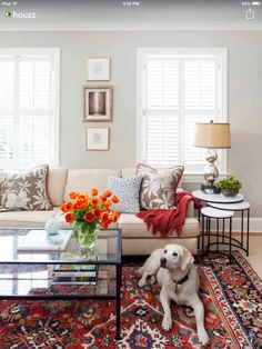 Living Room: I'll take the pup too.