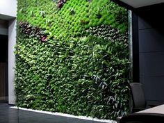 Indoor garden in office building in Spain. Pic by Urbanarbolism.