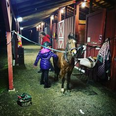 Teaching beginner lessons #horse #horses #horsesofinstagram #instahorse #instagramhorse #instagramhorses #pet #petoftheday #instapet #instagrampet #instagrampets #horsebackriding #horseriding #equestrian #equestrianlife  #hackney #hackneypony #ponychild #pony #demonpony #ponymare #ilovemypony #horselessons #ponylove