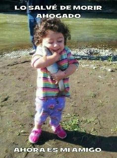 The fish that lived // funny pictures - funny photos - funny images - funny pics - funny quotes - Funny, Jokes, Humor Funny Cute, The Funny, Funny Shit, Funny Stuff, Super Funny, Funny Things, Funny Dad, Funny Babies, Funny Pictures With Captions