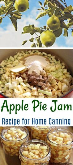 Jelly Recipes, Apple Pie Recipes, Jam Recipes, Canning Recipes, Canning 101, Cooker Recipes, Apple Desserts, Apple Pie Jam, Sweets