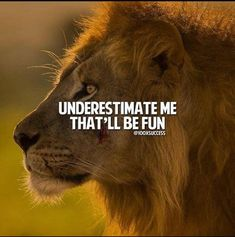 247 Motivierende und inspirierende Zitate - the power of words - Lioness Quotes, Wolf Quotes, Men Quotes, Wisdom Quotes, True Quotes, Great Quotes, Motivational Quotes, Inspirational Quotes, Qoutes