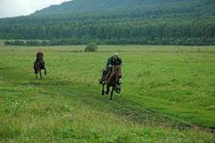 Horse tour South Ural