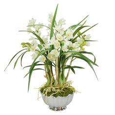 Jane Seymour Botanicals White Cymbidium Orchids in 25-inch-tall Metal Bowl