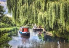 Ashley Franklin returns to Shardlow to find it still a perfect place to work, live and while away the hours watching the boats go by Derbyshire, Green Grass, Perfect Place, Cruise, Boat, Places, Dinghy, Cruises, Boats