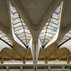 Gare de Saint-Exupéry TGV, Lyon, France (1024x1024) - Imgur Futuristic Architecture, Architecture Design, Oscar Niemeyer, Santiago Calatrava, Zaha Hadid, Catania, Saints, Train Stations, Lyon France