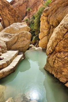 Chebika - mountain oasis in western Tunisia