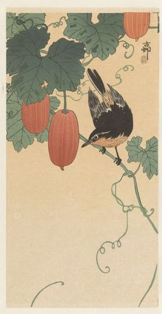 Page: A flycatcher on cucumber bush Artist: Ohara Koson Completion Date: Style: Shin-hanga Genre: bird-and-flower painting Technique:. Japanese Painting, Chinese Painting, Chinese Art, Japanese Artwork, Ohara Koson, Art And Illustration, Botanical Illustration, Popular Paintings, Art Asiatique