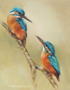 Painting kingfishers #birdart #wildlifeart www.marjoleinkruijt.nl