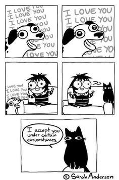 This is so true. I compare myself to a cat and dog hybrid mostly dog though.