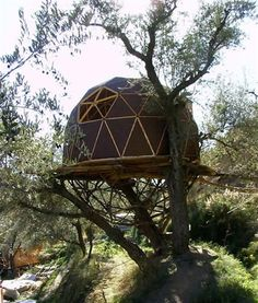 This geodesic dome perched in an olive tree uses natural pine, cork and clay for construction in a Spanish ecovillage. Like the Fab Tree Hab, this structure combines the general form of a geodesic dome with the sustainability of an earthship.