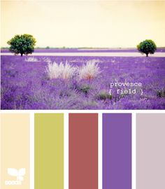 Casinha colorida: Cores da Provence!!
