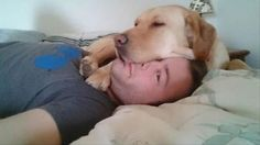 Dogs That Have Zero Concept Of What Personal Space Is – 20 Pics