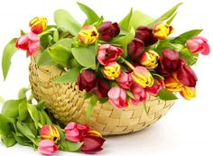 Save on birthday flower bouquets and gifts online Flowers for