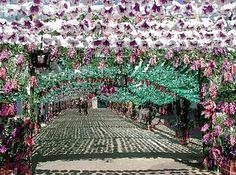 Festas de Rio Maior, Portugal, 2011  Streets covered in paper flowers