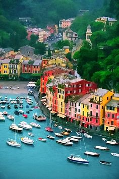 We should add a week to our trip to Greece and spend some time here. Harbor, Portofino, Italy