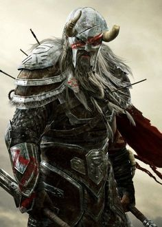 This store created for those person who love vikings. And if you are a viking lover then you can make order for a viking t shirt. The Elder Scrolls, Elder Scrolls Online, Viking Power, Viking Warrior, Fantasy Armor, Medieval Fantasy, Character Portraits, Character Art, Viking Character